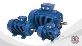 Comprar Motores Electricos de Baja Tension WEG linea W20