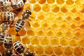 Comprar Honey - Miel