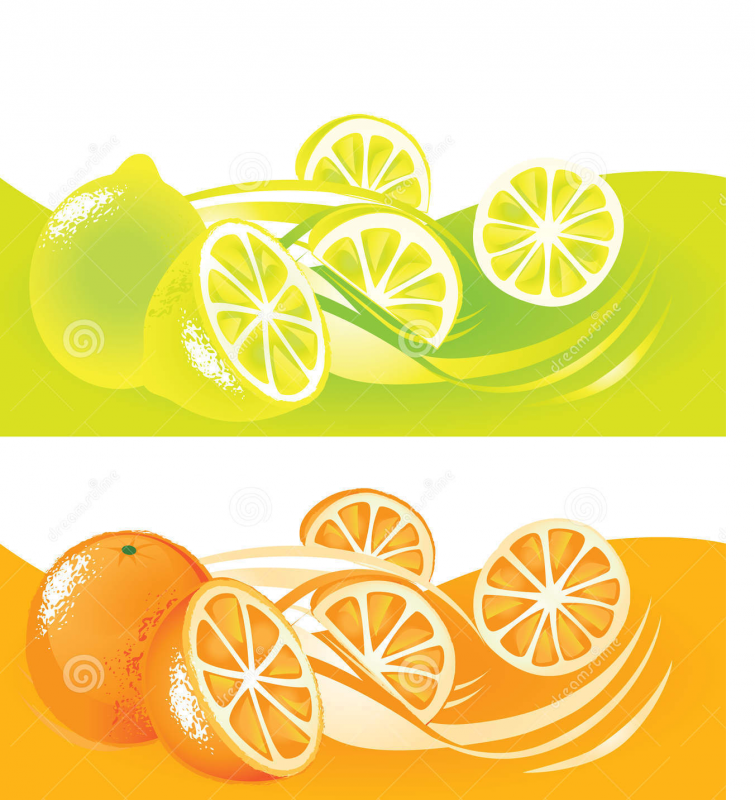 Comprar Citrus Del Sudeste Bonaerense