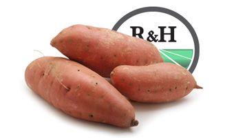 Comprar Batata Naranja