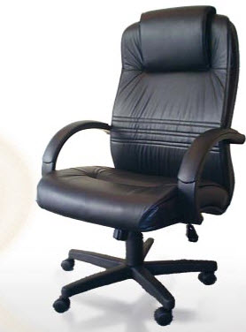 Buy Armchairs leather