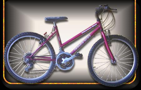 Comprar Bicicleta modelo 07