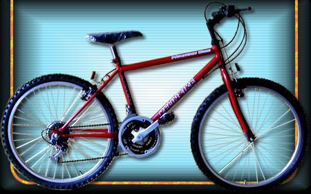 Comprar Bicicleta modelo 08