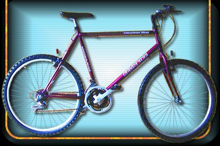 Comprar Bicicleta modelo 04