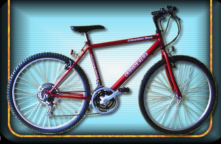 Comprar Bicicleta modelo 06