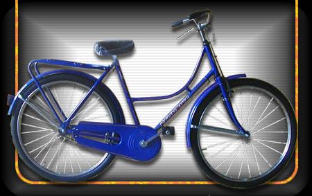 Comprar Bicicleta modelo 01