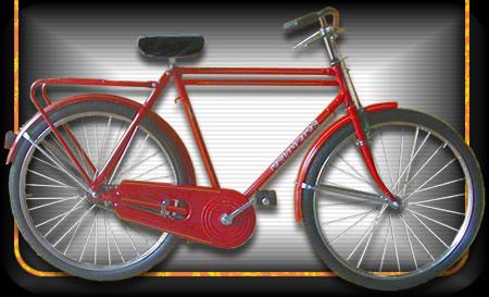 Comprar Bicicleta modelo 02