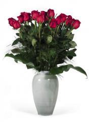 Rosas Rojas premium