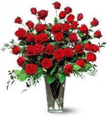 Rosas premium