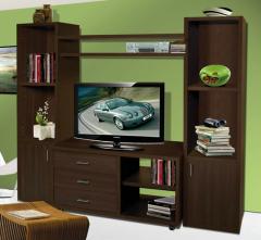 Muebles del Living