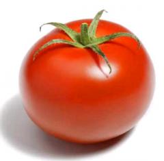 Tomate Redondo