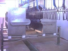 Máquina Desplumadora de Pollos Contrarrotante