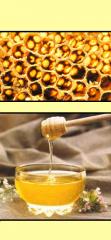 Cosmética Natural Activada con productos apícolas