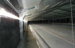 Units for animal industries and poultry farming