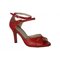Zapato de tango ana 42