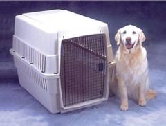 Cajas para perros de tamaño grande