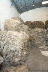 Natural sheep skins