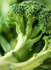 Brocoli,  Aplicada a la industria Alimenticia,