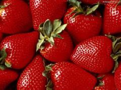 Fresa,  Aplicada a la industria Alimenticia,