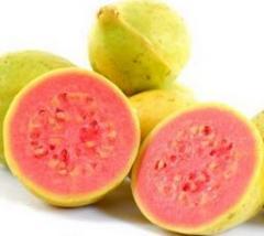 Guayaba, Aplicada a la industria Alimenticia,