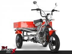 Ciclomotor Zanella Tri Cargo 90