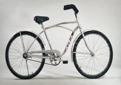 Bicicleta playera modelo 1101