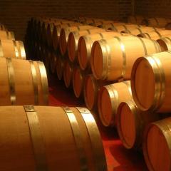 Barriles de vino. Sala de elaboracion