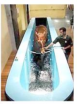 Hidroterapia, cinta sumergible