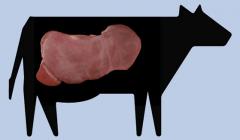 Hígado de vaca
