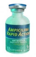 Antibióticos Amplicina Complex