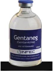 GENTANEG Gentamicina 4g.