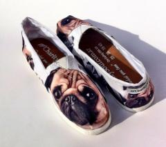 Canvas shoes / calzado casual perritos