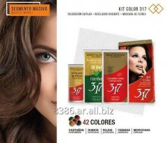 Hair dye - Color Kit 317,  Kit de Coloración Capilar