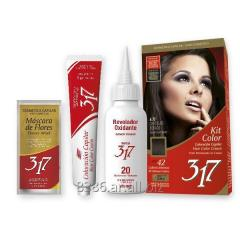 Kit Color 317 - Premium