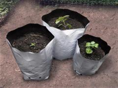 Bolsas de Cultivo Blanco/Negro