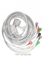 Cable a paciente DB15M - 10 broches para Polígrafo