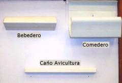 Productos De la línea avícola