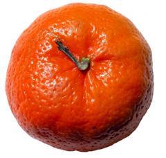 Mandarinas Clementina Fina
