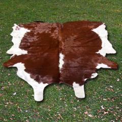 Sığır  derisi