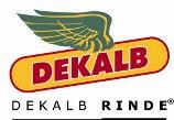 Semillas Maiz Dekalb