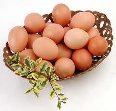 Huevos Avicoper Plus