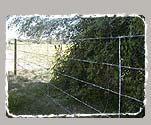 Alambrado rural de 5 hilos