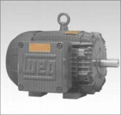 Motor Electrico Weg CESI