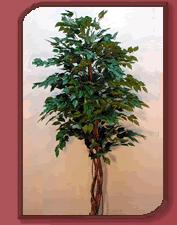 Planta Ficus Grande artificial