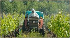Azufre para el Agro