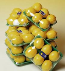 Limones Frecos Empacados