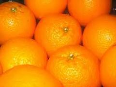 Naranjas valencia, navel