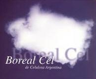 Papel Borealcel