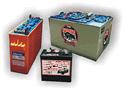 Baterías de Tracción  Eléctrica