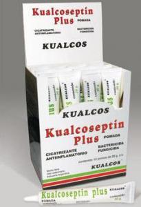 Antibacteriano Kualcoseptin plus pomada
